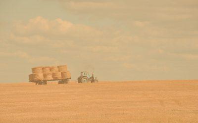 BANDO INAIL AGRICOLTURA 2019-2020 : come ottenere un contributo a fondo perduto del 40-50%
